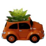 Car with plant